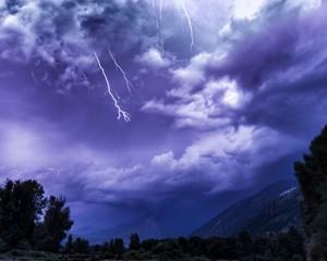 lightning_leav_thumb-1